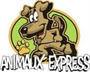 Logo Animaux Express Blankenberge
